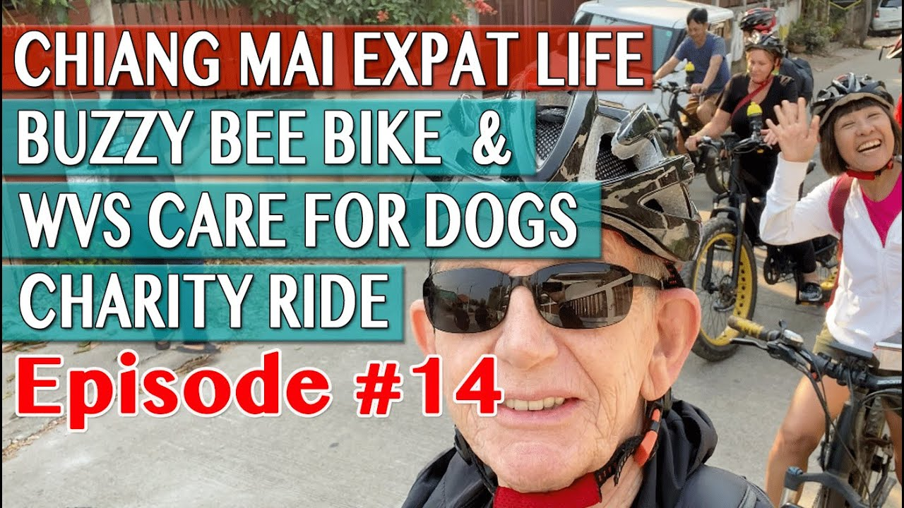 Expat Life Chiang Mai - Buzzy Bee Bike & WVS Care For Dogs Charity Ride
